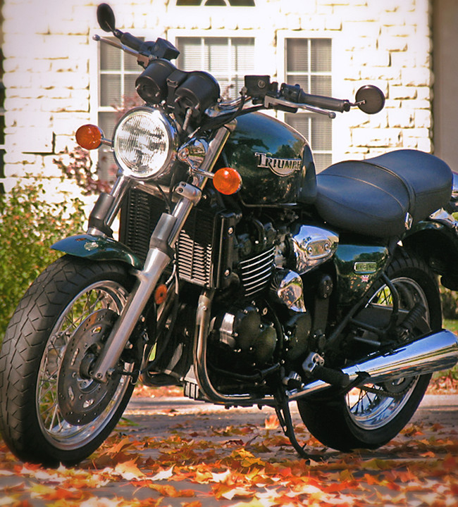 Only a few people know I ride a motorcycle. Shown here is my 1999 Triumph triple cylinder 883cc bike. I have ridden this for fourteen years and have a little over 40k miles on the engine.